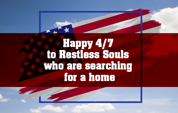 Happy 4/7 to Restless Souls who are searching for a home